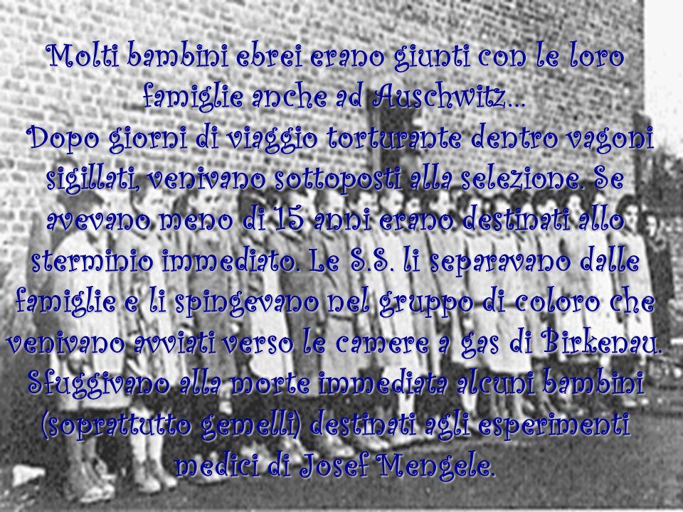 Molti bambini ebrei erano giunti con le loro famiglie anche ad Auschwitz… Dopo giorni di viaggio torturante dentro vagoni sigillati, venivano sottopos