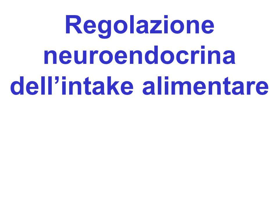 Regolazione neuroendocrina dellintake alimentare