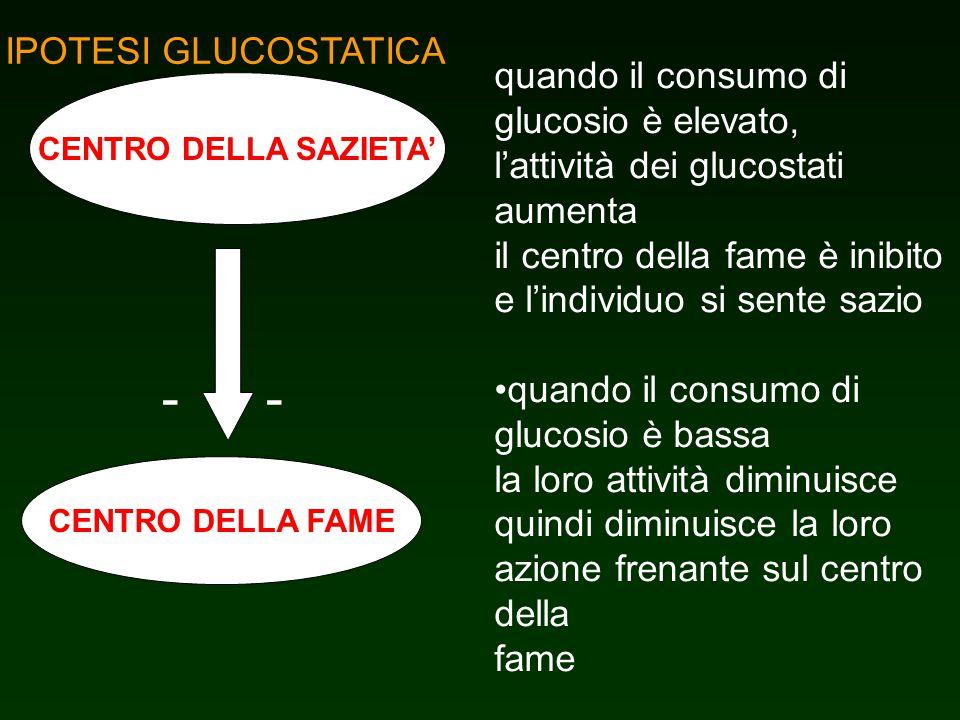 IPOTESI GLUCOSTATICA CENTRO DELLA SAZIETA CENTRO DELLA FAME -- quando il consumo di glucosio è elevato, lattività dei glucostati aumenta il centro del
