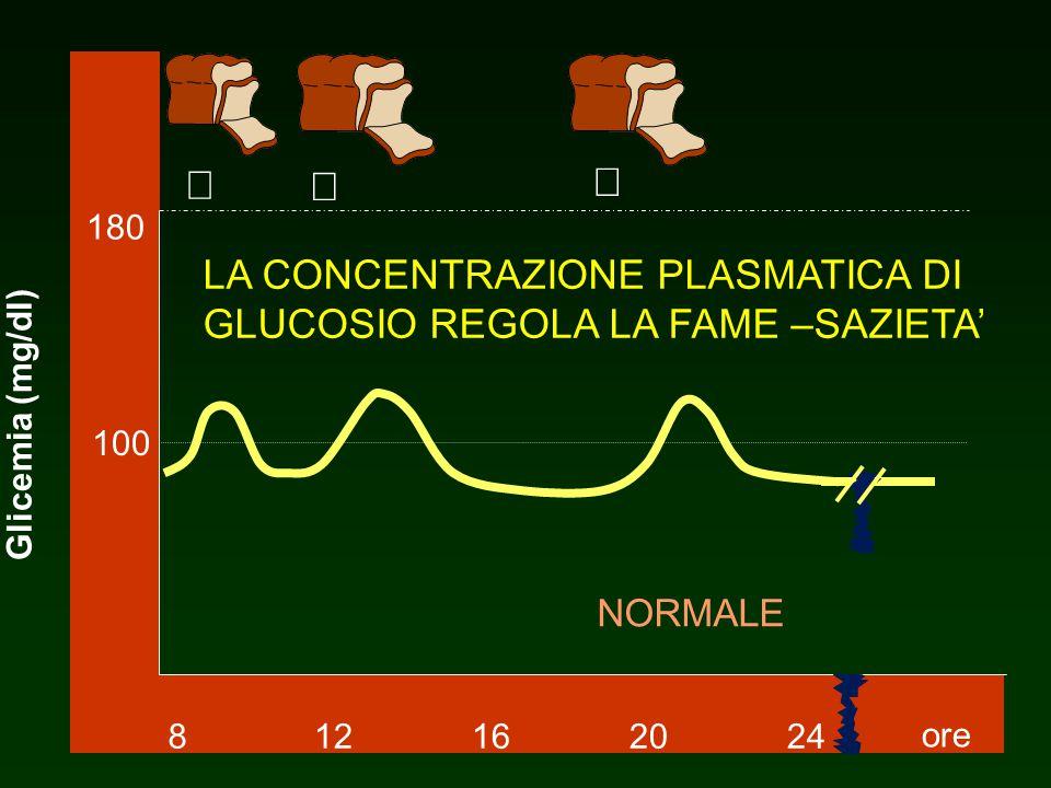 NORMALE 812162024 180 100 ore Glicemia (mg/dl) LA CONCENTRAZIONE PLASMATICA DI GLUCOSIO REGOLA LA FAME –SAZIETA