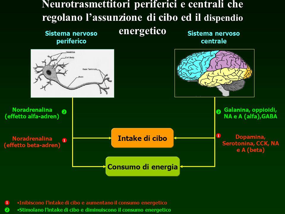 Sistema nervoso periferico Sistema nervoso centrale Intake di cibo Consumo di energia Noradrenalina (effetto alfa-adren) Noradrenalina (effetto beta-a