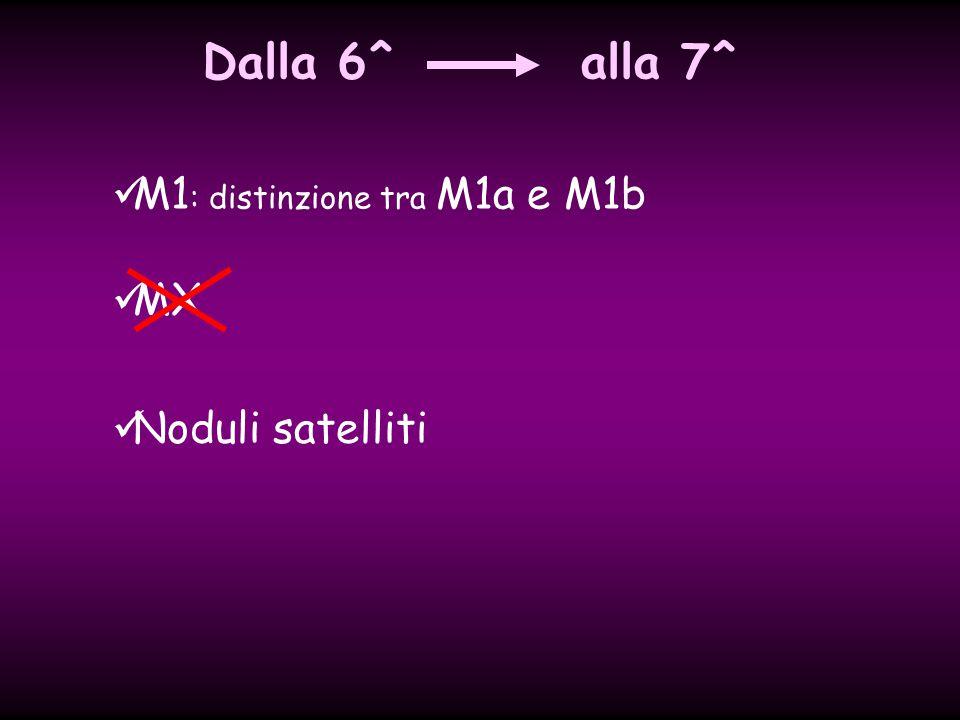MX Noduli satelliti M1 : distinzione tra M1a e M1b Dalla 6^alla 7^