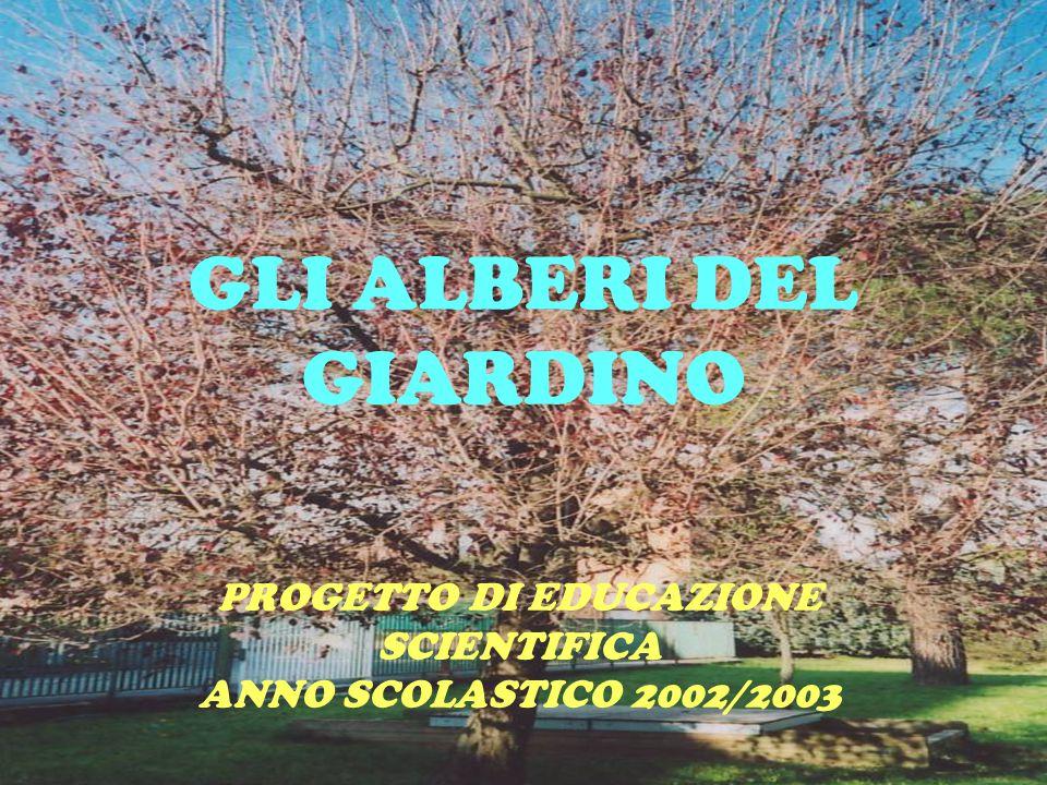 GLI ALBERI DEL GIARDINO PROGETTO DI EDUCAZIONE SCIENTIFICA ANNO SCOLASTICO 2002/2003