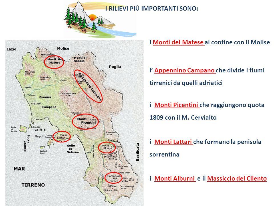 I RILIEVI PIÙ IMPORTANTI SONO: l Appennino Campano che divide i fiumi tirrenici da quelli adriatici Appennino Campano i Monti Picentini che raggiungono quota 1809 con il M.