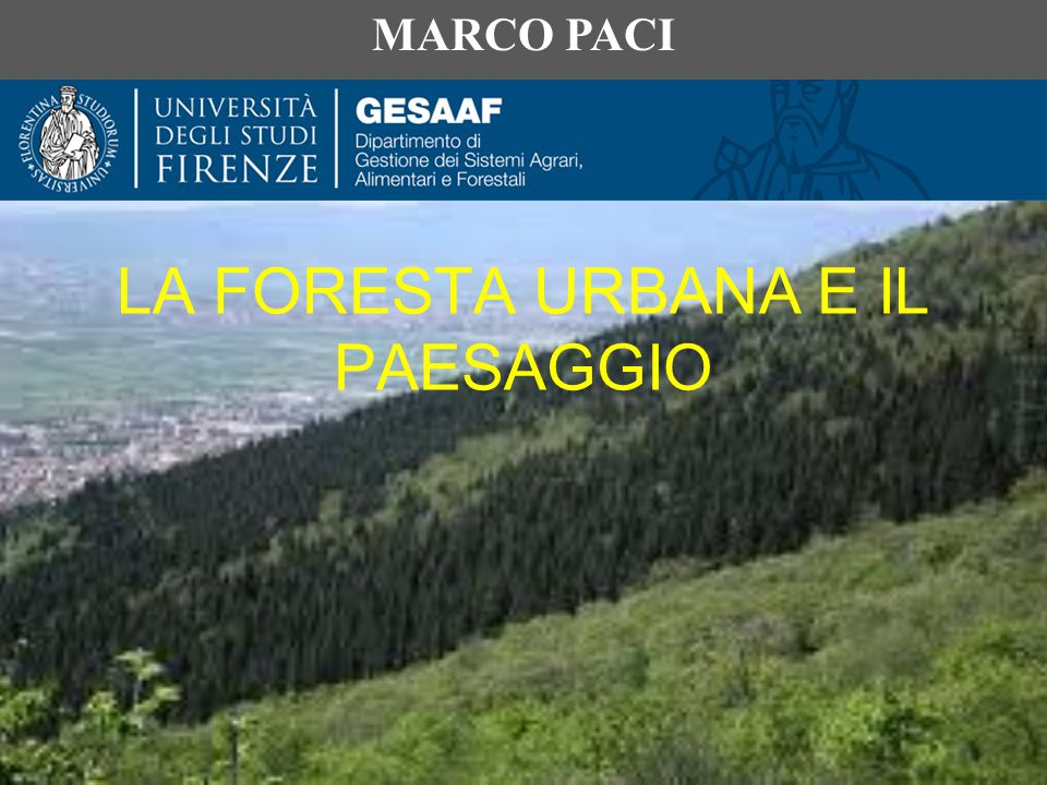 LA FORESTA URBANA E IL PAESAGGIO MARCO PACI