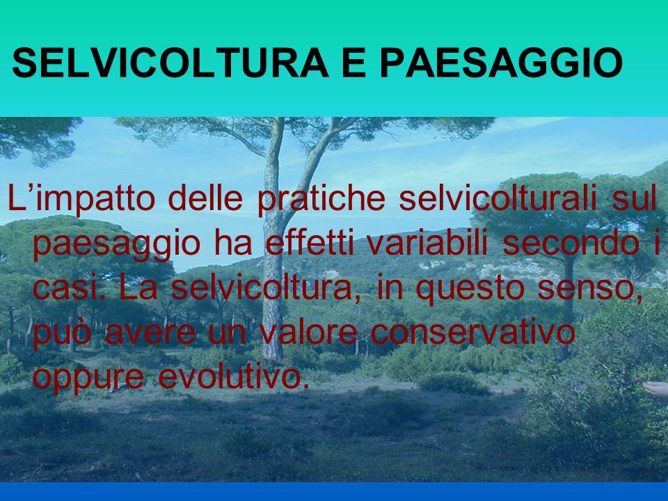 SELVICOLTURA E PAESAGGIO Limpatto delle pratiche selvicolturali sul paesaggio ha effetti variabili secondo i casi. La selvicoltura, in questo senso, p