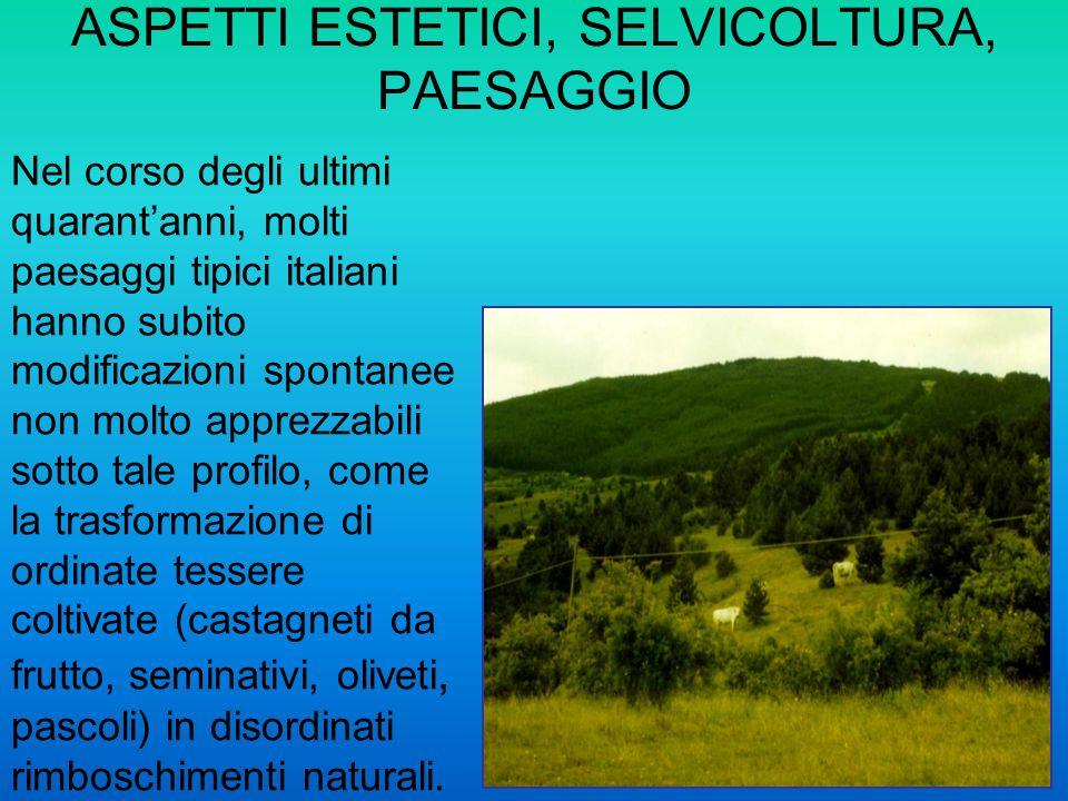 Nel corso degli ultimi quarantanni, molti paesaggi tipici italiani hanno subito modificazioni spontanee non molto apprezzabili sotto tale profilo, com