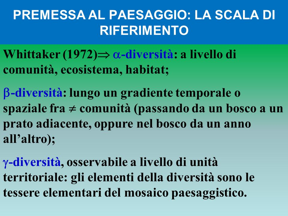 PREMESSA AL PAESAGGIO: LA SCALA DI RIFERIMENTO Whittaker (1972) -diversità: a livello di comunità, ecosistema, habitat; -diversità: lungo un gradiente