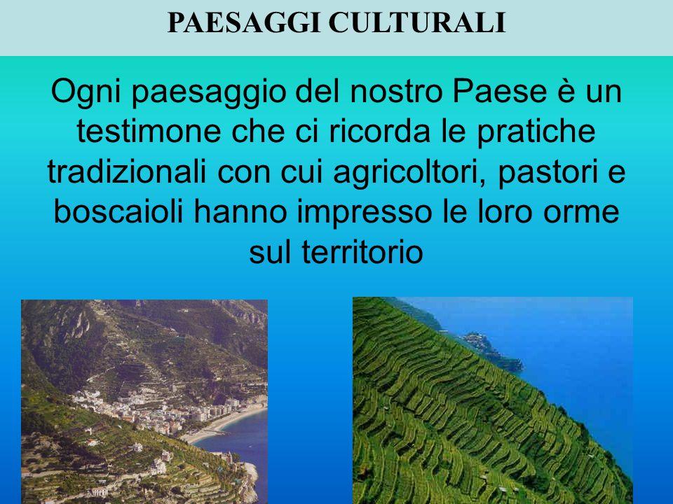 Ogni paesaggio del nostro Paese è un testimone che ci ricorda le pratiche tradizionali con cui agricoltori, pastori e boscaioli hanno impresso le loro