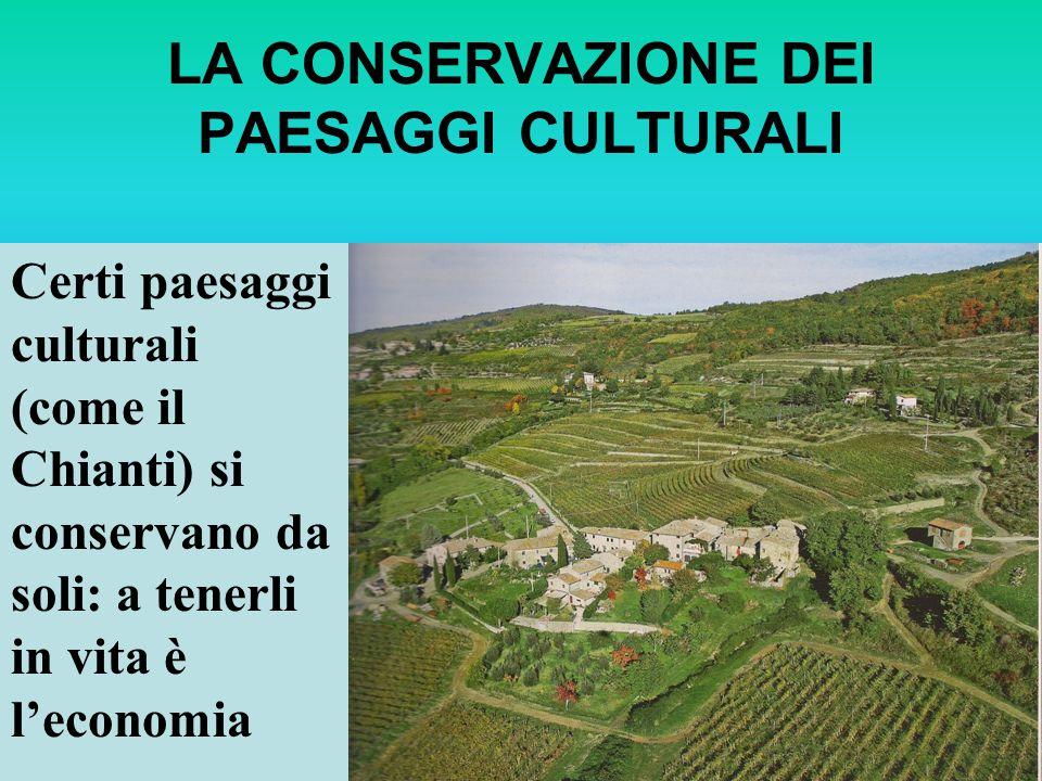 LA CONSERVAZIONE DEI PAESAGGI CULTURALI Certi paesaggi culturali (come il Chianti) si conservano da soli: a tenerli in vita è leconomia
