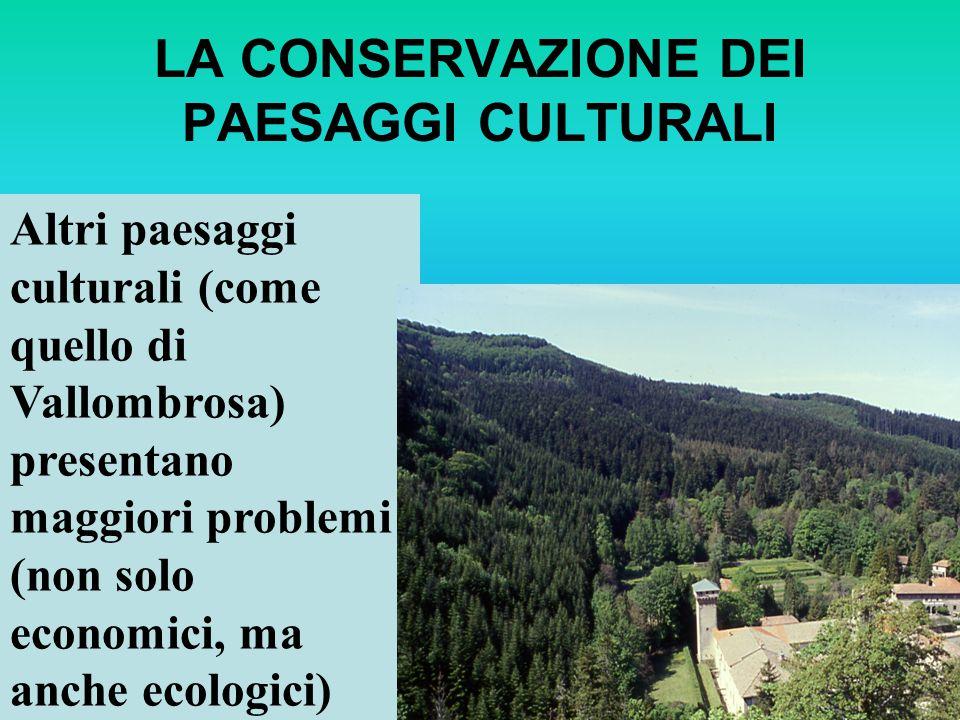 LA CONSERVAZIONE DEI PAESAGGI CULTURALI Altri paesaggi culturali (come quello di Vallombrosa) presentano maggiori problemi (non solo economici, ma anc