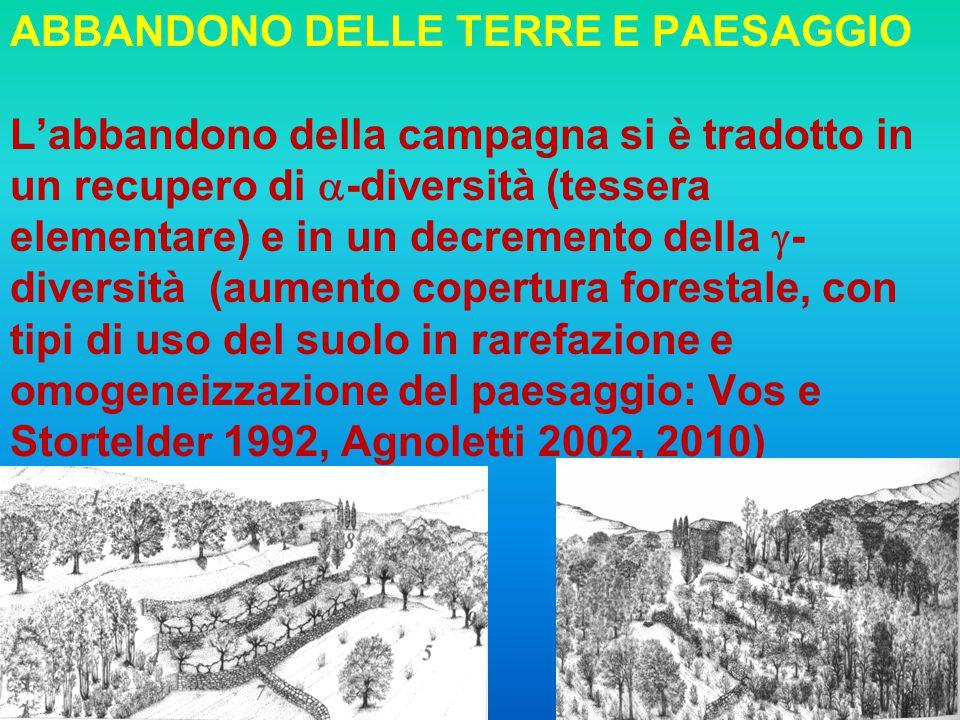 5 ABBANDONO DELLE TERRE E PAESAGGIO Labbandono della campagna si è tradotto in un recupero di -diversità (tessera elementare) e in un decremento della