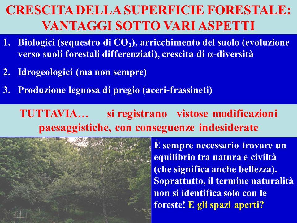 CRESCITA DELLA SUPERFICIE FORESTALE: VANTAGGI SOTTO VARI ASPETTI 1.Biologici (sequestro di CO 2 ), arricchimento del suolo (evoluzione verso suoli for