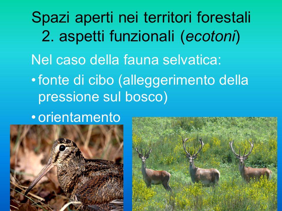 Spazi aperti nei territori forestali 2. aspetti funzionali (ecotoni) Nel caso della fauna selvatica: fonte di cibo (alleggerimento della pressione sul