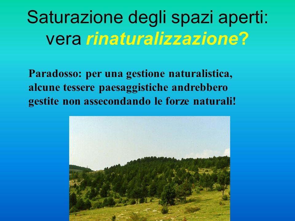 Saturazione degli spazi aperti: vera rinaturalizzazione? Paradosso: per una gestione naturalistica, alcune tessere paesaggistiche andrebbero gestite n