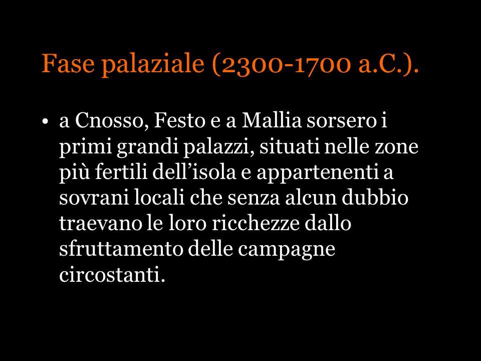 Fase palaziale (2300-1700 a.C.). a Cnosso, Festo e a Mallia sorsero i primi grandi palazzi, situati nelle zone più fertili dellisola e appartenenti a