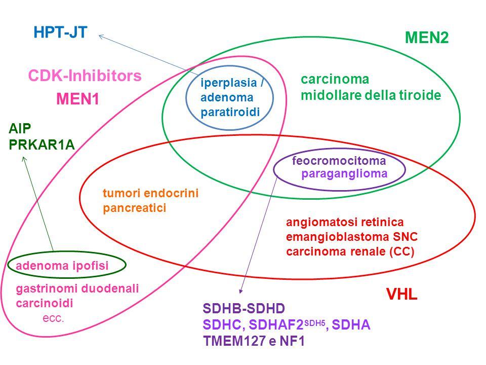 iperplasia / adenoma paratiroidi feocromocitoma carcinoma midollare della tiroide MEN2 tumori endocrini pancreatici adenoma ipofisi gastrinomi duodena