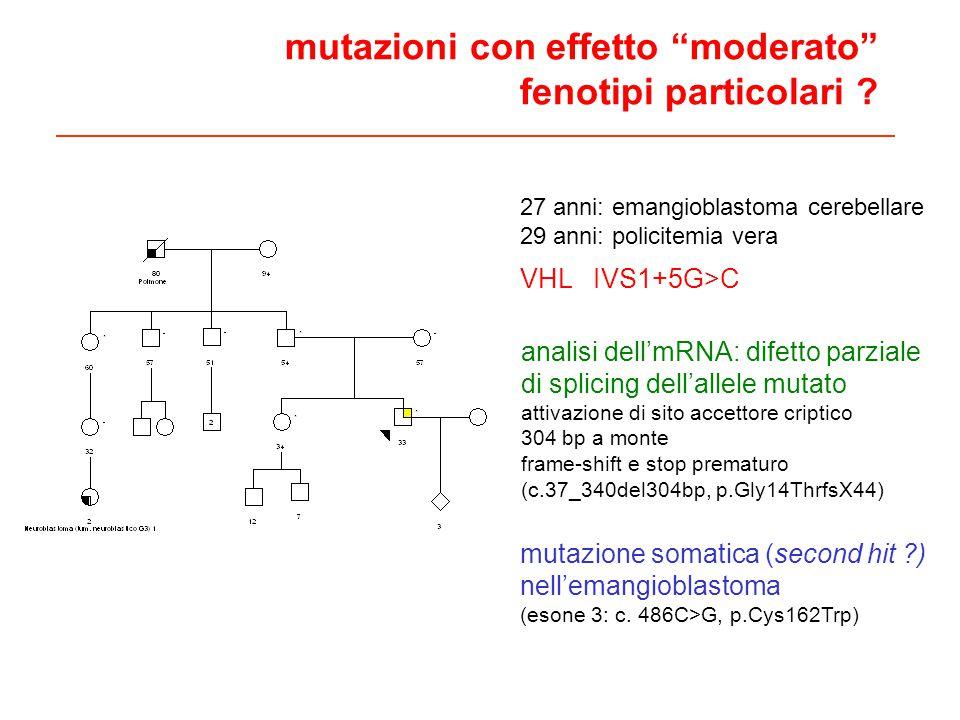 27 anni: emangioblastoma cerebellare 29 anni: policitemia vera VHL IVS1+5G>C analisi dellmRNA: difetto parziale di splicing dellallele mutato attivazione di sito accettore criptico 304 bp a monte frame-shift e stop prematuro (c.37_340del304bp, p.Gly14ThrfsX44) mutazione somatica (second hit ?) nellemangioblastoma (esone 3: c.