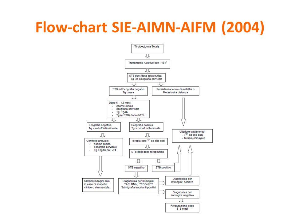 Flow-chart SIE-AIMN-AIFM (2004)
