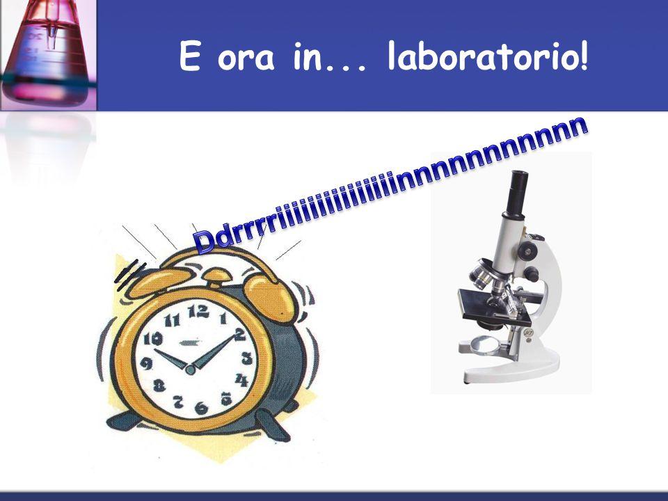 E ora in... laboratorio!