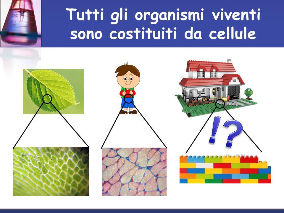 Tutti gli organismi viventi sono costituiti da cellule