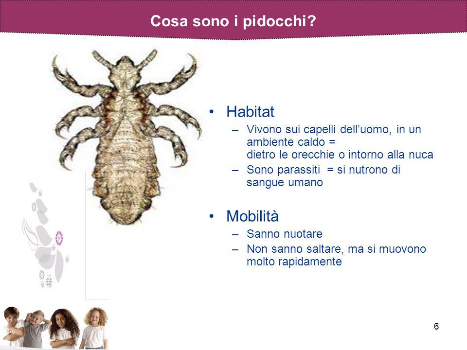 6 Habitat –Vivono sui capelli delluomo, in un ambiente caldo = dietro le orecchie o intorno alla nuca –Sono parassiti = si nutrono di sangue umano Mob