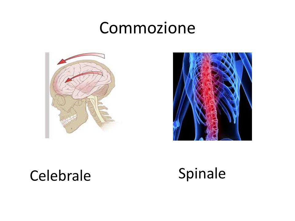 Commozione Celebrale Spinale