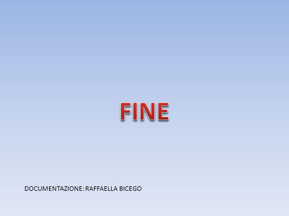 DOCUMENTAZIONE: RAFFAELLA BICEGO