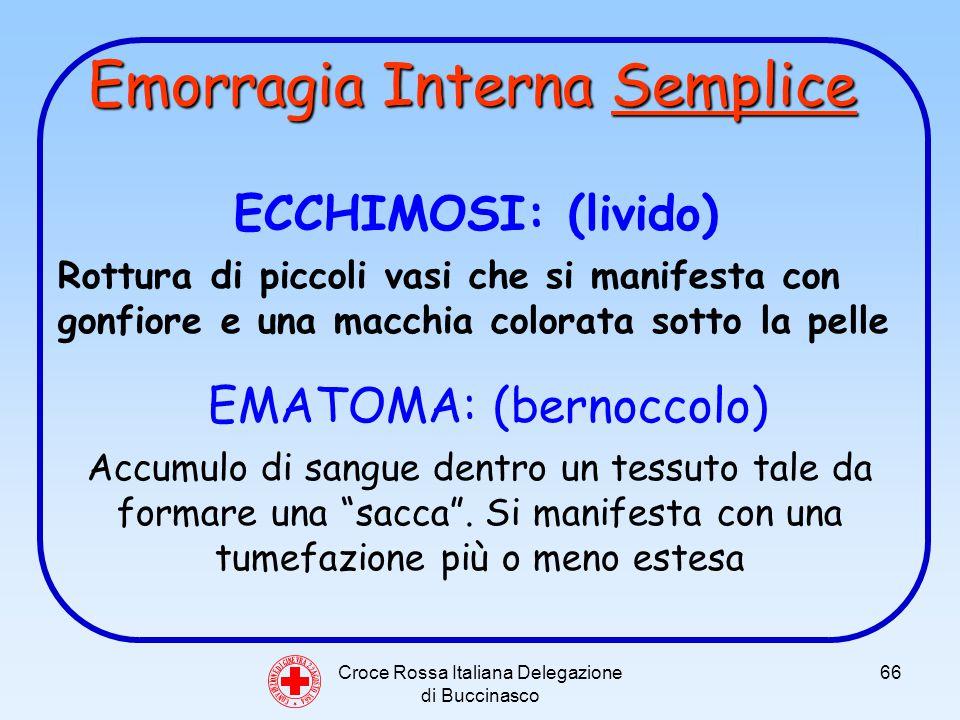 Croce Rossa Italiana Delegazione di Buccinasco 66 ECCHIMOSI: (livido) Rottura di piccoli vasi che si manifesta con gonfiore e una macchia colorata sotto la pelle EMATOMA: (bernoccolo) Accumulo di sangue dentro un tessuto tale da formare una sacca.