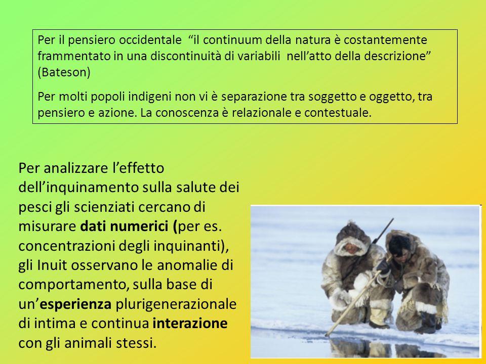 Per il pensiero occidentale il continuum della natura è costantemente frammentato in una discontinuità di variabili nellatto della descrizione (Bateso