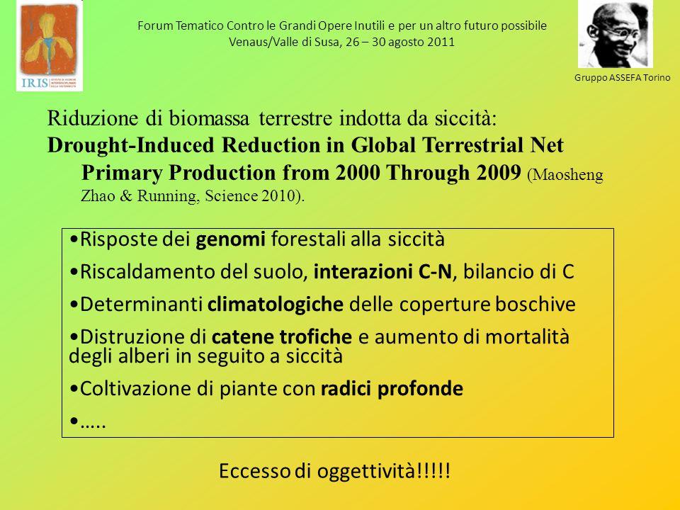 Forum Tematico Contro le Grandi Opere Inutili e per un altro futuro possibile Venaus/Valle di Susa, 26 – 30 agosto 2011 Gruppo ASSEFA Torino Riduzione