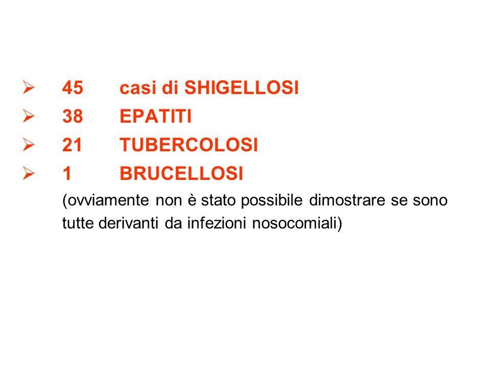 45casi di SHIGELLOSI 38EPATITI 21TUBERCOLOSI 1BRUCELLOSI (ovviamente non è stato possibile dimostrare se sono tutte derivanti da infezioni nosocomiali)