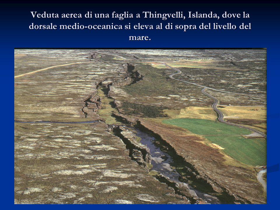 Veduta aerea di una faglia a Thingvelli, Islanda, dove la dorsale medio-oceanica si eleva al di sopra del livello del mare.