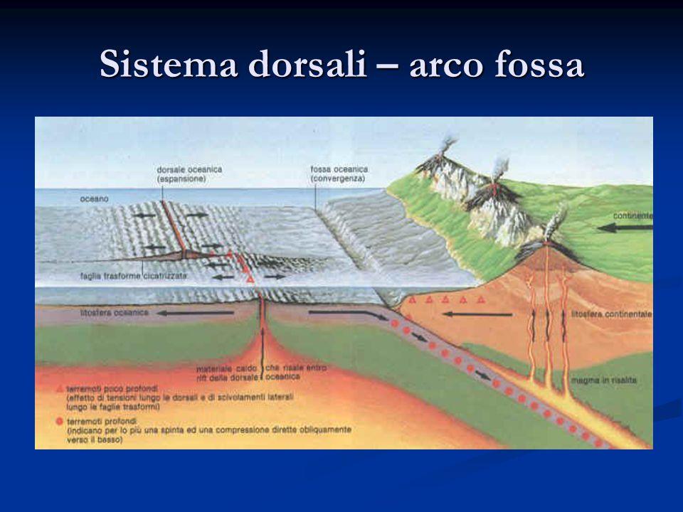 Sistema dorsali – arco fossa