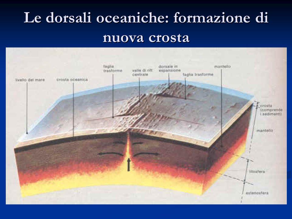 Le dorsali oceaniche: formazione di nuova crosta