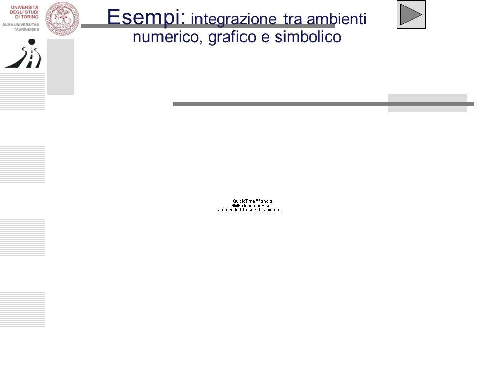 Esempi: integrazione tra ambienti numerico, grafico e simbolico