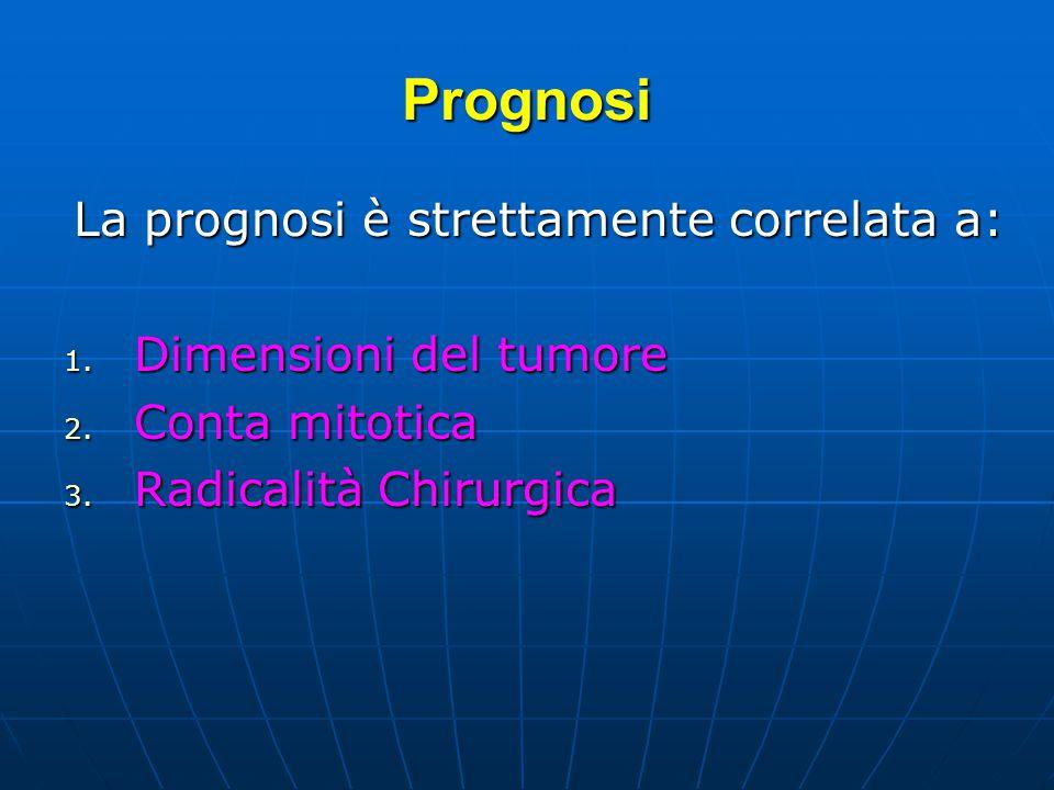 Prognosi La prognosi è strettamente correlata a: 1. Dimensioni del tumore 2. Conta mitotica 3. Radicalità Chirurgica