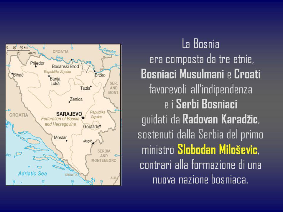 La Bosnia era composta da tre etnie, Bosniaci Musulmani e Croati favorevoli all'indipendenza e i Serbi Bosniaci guidati da Radovan Karadžic, sostenuti