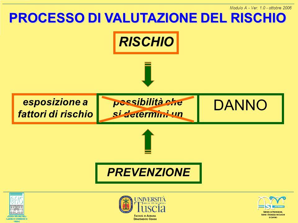 Modulo A - Ver. 1.0 - ottobre 2006 PROCESSO DI VALUTAZIONE DEL RISCHIO PREVENZIONE RISCHIO esposizione a fattori di rischio DANNO possibilità che si d