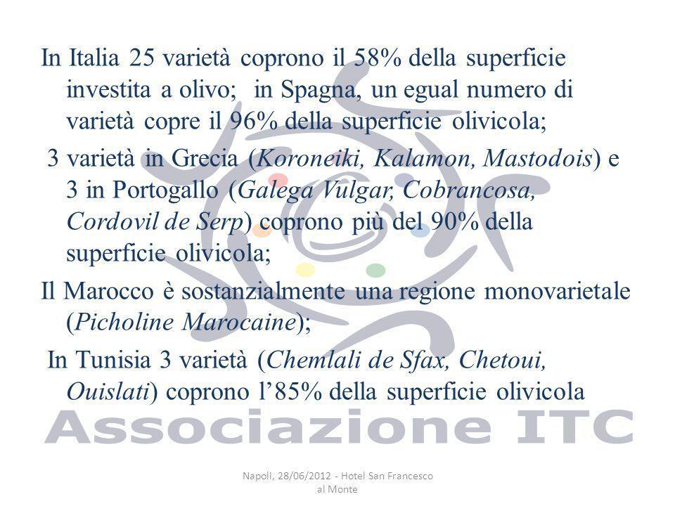 In Italia 25 varietà coprono il 58% della superficie investita a olivo; in Spagna, un egual numero di varietà copre il 96% della superficie olivicola; 3 varietà in Grecia (Koroneiki, Kalamon, Mastodois) e 3 in Portogallo (Galega Vulgar, Cobrancosa, Cordovil de Serp) coprono più del 90% della superficie olivicola; Il Marocco è sostanzialmente una regione monovarietale (Picholine Marocaine); In Tunisia 3 varietà (Chemlali de Sfax, Chetoui, Ouislati) coprono l85% della superficie olivicola Napoli, 28/06/2012 - Hotel San Francesco al Monte