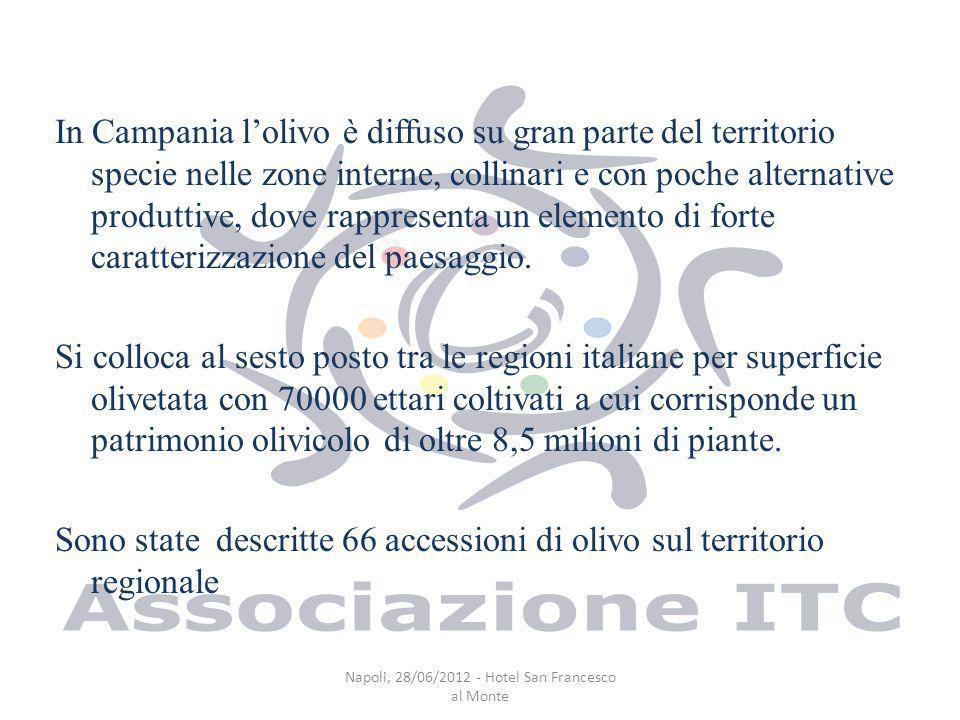 In Campania lolivo è diffuso su gran parte del territorio specie nelle zone interne, collinari e con poche alternative produttive, dove rappresenta un elemento di forte caratterizzazione del paesaggio.