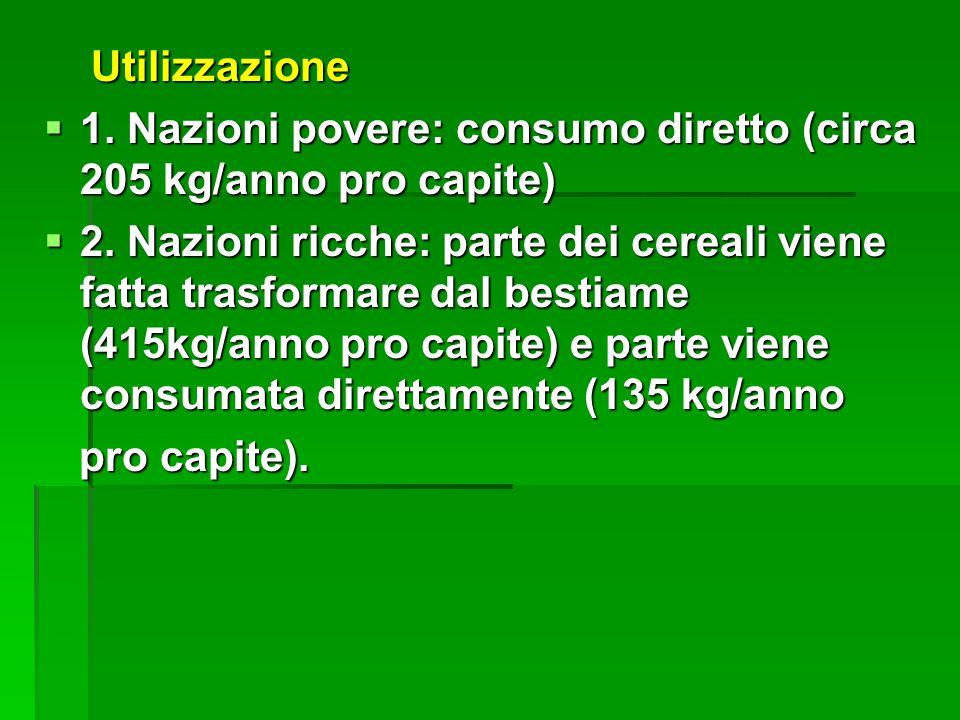 Utilizzazione Utilizzazione 1. Nazioni povere: consumo diretto (circa 205 kg/anno pro capite) 1. Nazioni povere: consumo diretto (circa 205 kg/anno pr