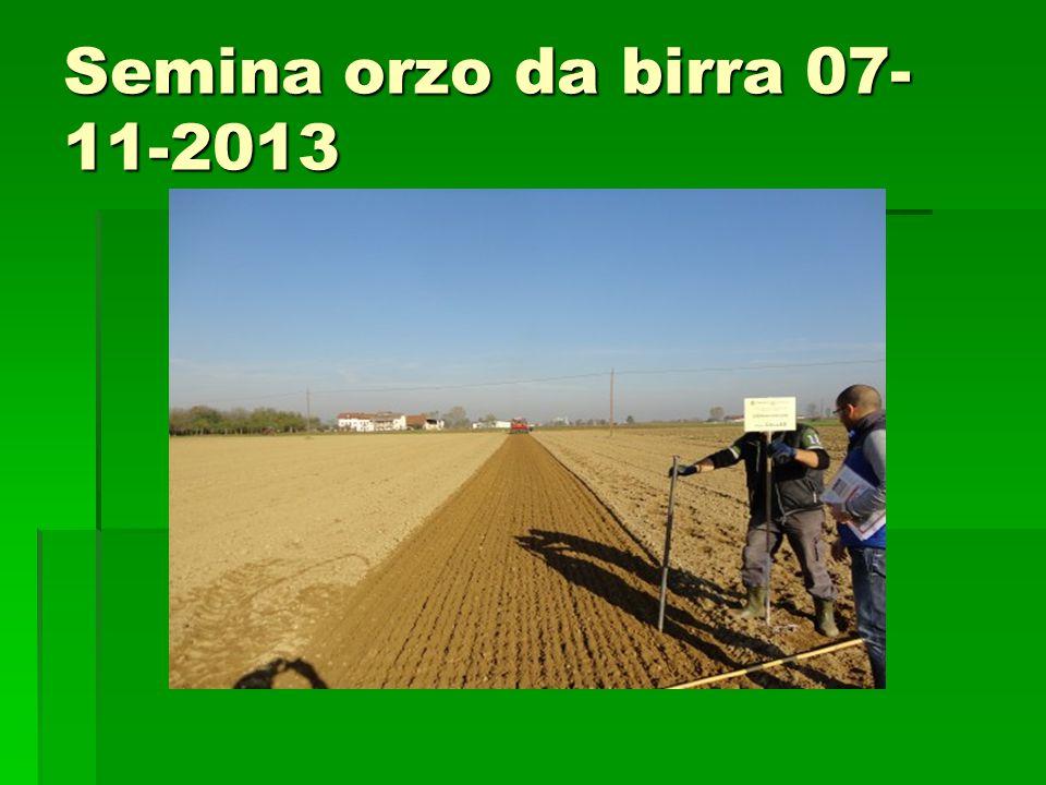 Semina orzo da birra 07- 11-2013