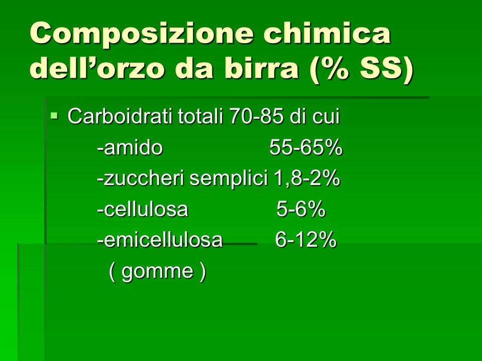 Composizione chimica dellorzo da birra (% SS) Carboidrati totali 70-85 di cui Carboidrati totali 70-85 di cui -amido 55-65% -amido 55-65% -zuccheri se
