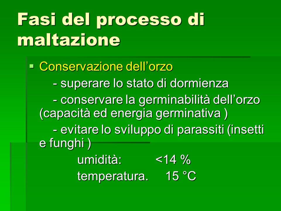 Fasi del processo di maltazione Conservazione dellorzo Conservazione dellorzo - superare lo stato di dormienza - superare lo stato di dormienza - conservare la germinabilità dellorzo (capacità ed energia germinativa ) - conservare la germinabilità dellorzo (capacità ed energia germinativa ) - evitare lo sviluppo di parassiti (insetti e funghi ) - evitare lo sviluppo di parassiti (insetti e funghi ) umidità: <14 % umidità: <14 % temperatura.