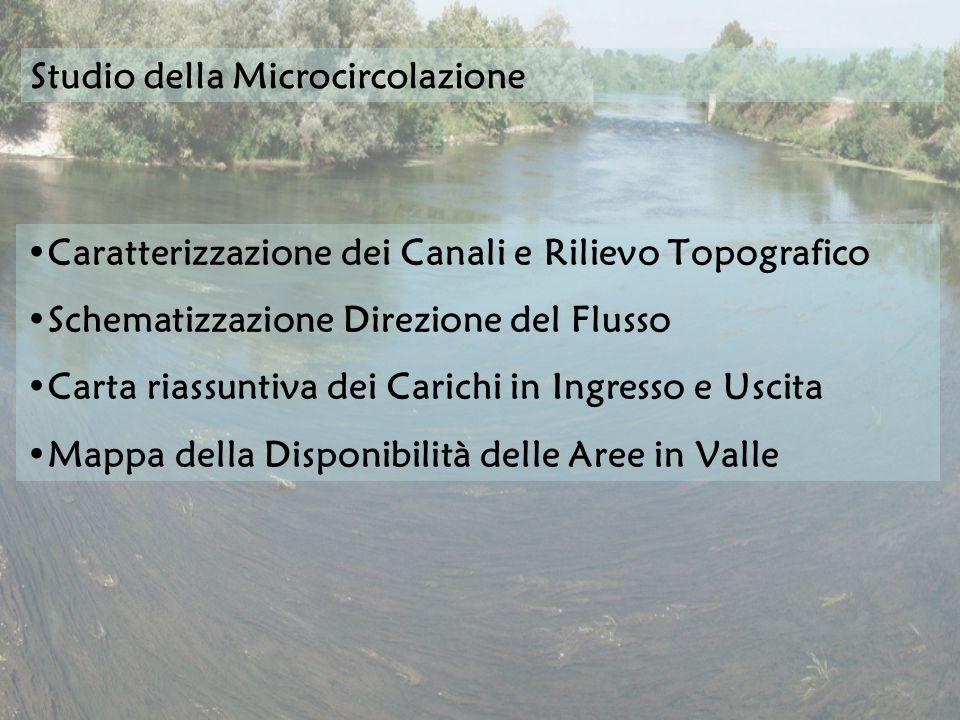 Caratterizzazione dei Canali e Rilievo Topografico Schematizzazione Direzione del Flusso Carta riassuntiva dei Carichi in Ingresso e Uscita Mappa della Disponibilità delle Aree in Valle Studio della Microcircolazione