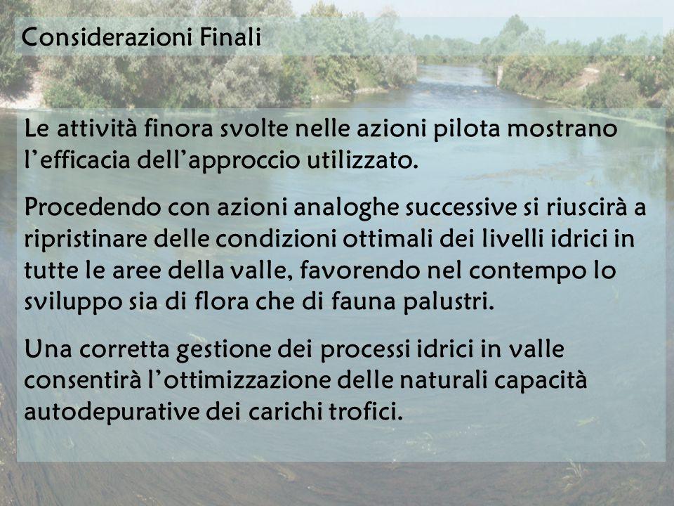 Considerazioni Finali Le attività finora svolte nelle azioni pilota mostrano lefficacia dellapproccio utilizzato.