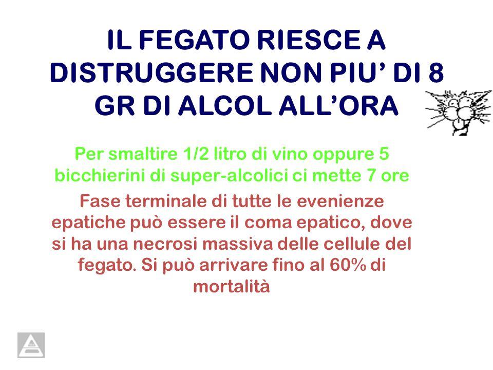 IL FEGATO RIESCE A DISTRUGGERE NON PIU DI 8 GR DI ALCOL ALLORA Per smaltire 1/2 litro di vino oppure 5 bicchierini di super-alcolici ci mette 7 ore Fa