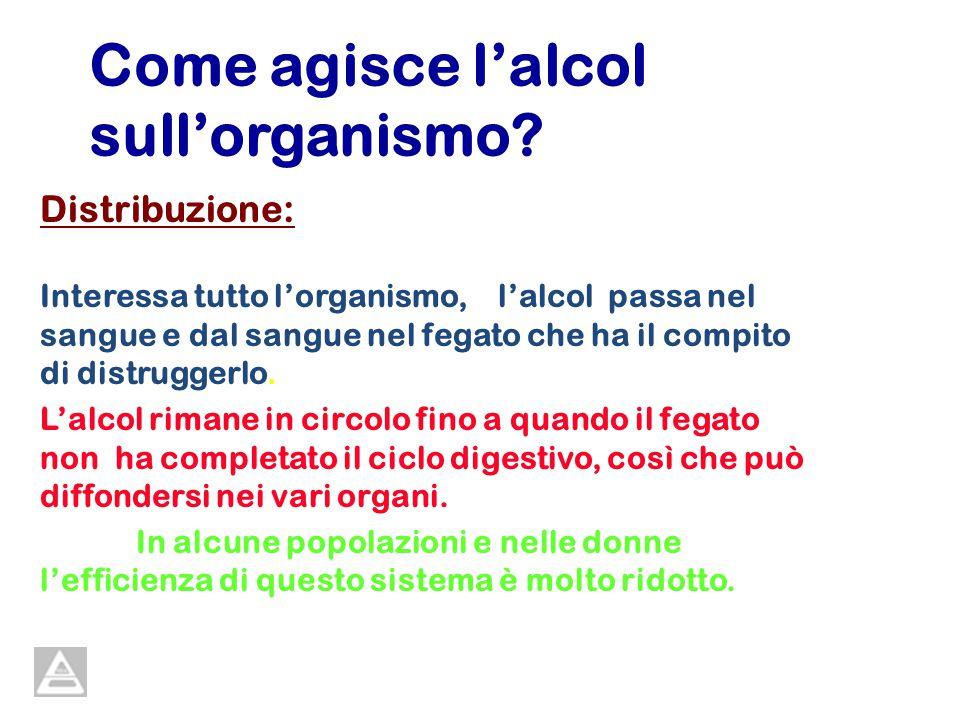 Come agisce lalcol sullorganismo? Distribuzione: Interessa tutto lorganismo, lalcol passa nel sangue e dal sangue nel fegato che ha il compito di dist