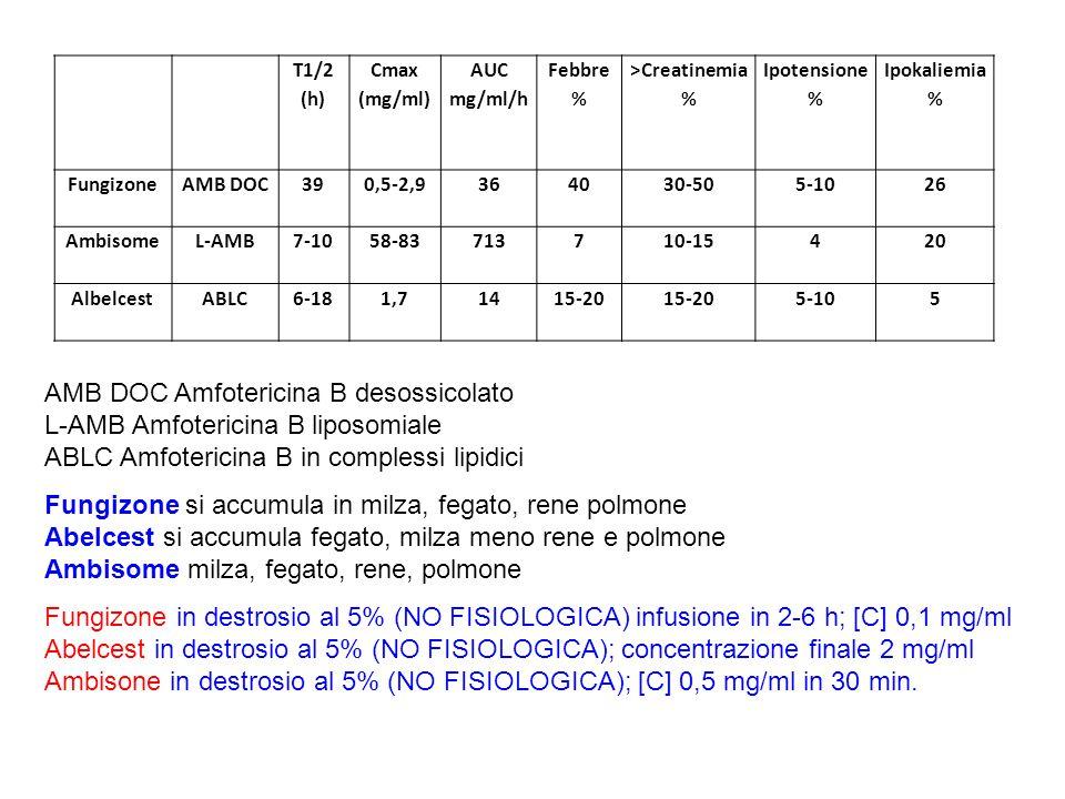 T1/2 (h) Cmax (mg/ml) AUC mg/ml/h Febbre % >Creatinemia % Ipotensione % Ipokaliemia % FungizoneAMB DOC390,5-2,9364030-505-1026 AmbisomeL-AMB7-1058-837